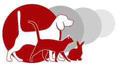 logo Clinique Veterinaire